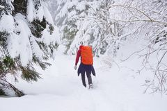Young man trekking in harsh winter condition stock images