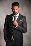 Young man in tuxedo coat fixing his green tie. And holds a hand in pocket in studio Stock Image