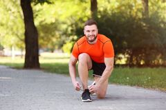 Young man tying shoelaces before running in park. On sunny day Royalty Free Stock Photos
