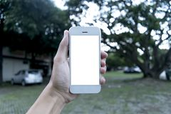 The young man uses his mobile phone to take pictures of his memories and see them in the future. stock photo