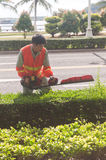 Young man using Power Hedge Trimmer Royalty Free Stock Photos