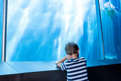 Young man waiting in front of an aquarium Royalty Free Stock Photography