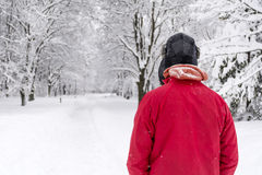 Young man walking alone in the winter park. Handsome young man in winter forest with hat, scarf and red jacket.Winter fashion Royalty Free Stock Image