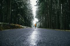 Young man walking on asphalt road in forest stock images