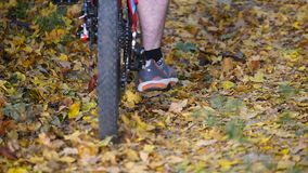 Young man walking with a bicycle in the autumn park. Close up.  stock video