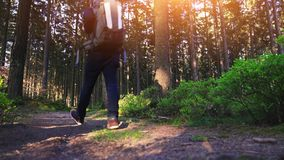Young man in silent forrest with sunlight stock footage