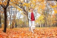Young man walking his dog royalty free stock photos