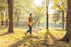 Young man walking his dog in a park Royalty Free Stock Image
