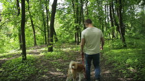 Young man walking with his dog in the park stock video