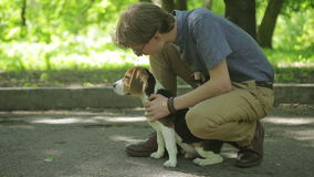 Young man walking with his dog in summer park. Man pats the dog. stock video