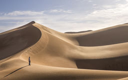 Young man walking in the sand dunes of Liwa desert. Young man walking in sand dunes in Liwa desert in Abu Dhabi royalty free stock photography