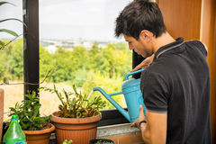 Young Man Watering Plants on Apartment Balcony Stock Images