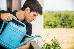 Young Man Watering Plants on Apartment Balcony Royalty Free Stock Images