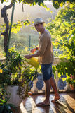 Young man watering plants in garden Royalty Free Stock Images