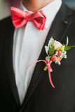 Young man wearing a bow tie Royalty Free Stock Photography
