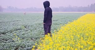 Young man wearing hood dress standing around an agricultural field. A young man wearing black hood dress standing around an agricultural field unique photo royalty free stock photos