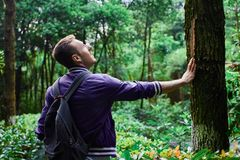 Man traveling in the forest with backpack. Young man wearing the purple blazer is walking in the forest with gray backpack royalty free stock photography