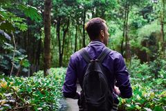 Man traveling in the forest with backpack. Young man wearing the purple blazer is walking in the forest with gray backpack royalty free stock images