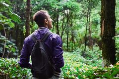 Man traveling in the forest with backpack. Young man wearing the purple blazer is walking in the forest with gray backpack royalty free stock photo