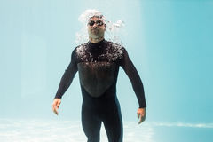 Young man wearing wetsuit Stock Photos