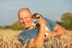 Young man in wheat field, afternoon light, holding Jack Russell terrier puppy on hands, moving head away, making a grimace, stock images