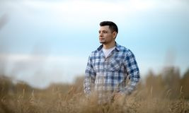 Young man in wheat field Stock Images