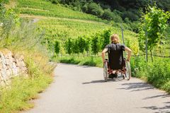 Young Man In Wheelchair. Enjoying time outdoors royalty free stock image
