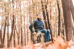 A young man in a wheelchair rides along the park road. royalty free stock photos