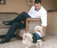 Young man with a white shirt and with trousers siting in a chair. And playing with a dog.  Concepts of friendship. Pets and his owner. The dog is dressed in a Stock Images