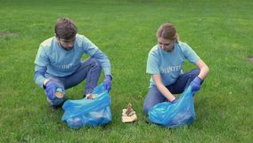 Young man and woman collecting garbage in bags giving high five, cleaning park. Stock footage stock footage