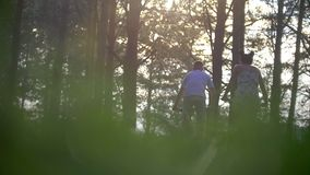 Young man and woman cycling through the pine forest stock video footage