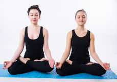 Young man and woman doing yoga and meditating in lotus position isolated on white background. Stock Photography