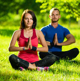Young man and woman doing yoga in the sunny summer park Stock Images
