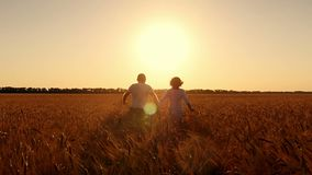 Young Man and woman holding hands and running through a wheat field, sunset, slow motion. Lens flare stock video footage