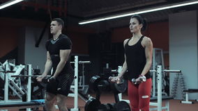 Young man and woman lifting weights in a gym. As they train together toning and strengthening their muscles , low angle with raised dumbbells stock footage