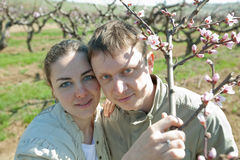 Young man and woman posing outdoors. Young couple in garden among the blossoming peach trees Royalty Free Stock Image