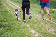 Young man and woman running with dog Royalty Free Stock Images