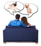 Young man and woman sitting on sofa and dreaming about pets isol Stock Photos