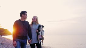 Young man and woman walking along the beach at sunset. A woman carries a puppy in hand stock footage