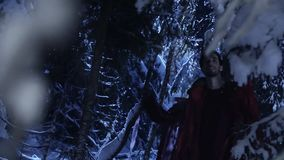 Young man and woman are wandering in snowy winter forest at silent night. stock footage
