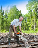 The young man in the wood saws a tree a chain petrolsaw Stock Photography