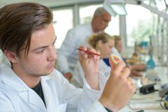 Young man working on dentures stock images