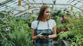 Young woman working in garden center. Attractive girl check and count flowers using tablet computer during work in. Young man working in garden center Royalty Free Stock Images