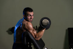 Young Man Working Out Biceps Royalty Free Stock Photography
