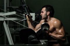 Young Man Working Out Biceps Stock Image