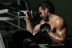 Young Man Working Out Biceps Royalty Free Stock Images