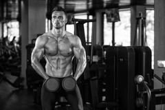 Young Man Working Out Biceps. Muscular Young Man Doing Heavy Weight Exercise For Biceps With Dumbbells In Modern Fitness Center Gym Stock Image