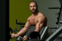 Young Man Working Out Biceps Royalty Free Stock Image