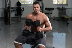 Young Man Working Out Chest With Dumbbells Stock Image