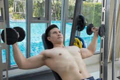 Young Man Working Out Shoulders with dumbbells, training in gym Royalty Free Stock Image